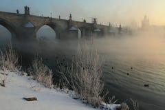 Ponticello del Charles in inverno Immagine Stock
