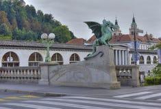 Ponticello del drago, Transferrina, Slovenia fotografia stock libera da diritti