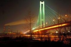Ponticello del sud alla notte, Kiev, uA Immagine Stock Libera da Diritti