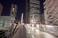 Ponticello della città di Tokyo alla notte Fotografia Stock Libera da Diritti