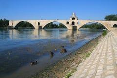 Ponticello della st Benezet, Avignon Fotografia Stock Libera da Diritti