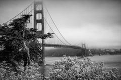 Ponticello di cancello dorato nella nebbia Immagini Stock