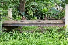 Ponticello di legno Fotografia Stock Libera da Diritti