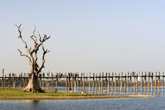 Ponticello di U Bein in Amarapura in Myanmar Fotografia Stock