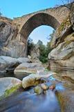 Ponticello e un ruscello nella regione di Mariovo Immagine Stock