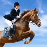 Ponticello equestre Fotografia Stock