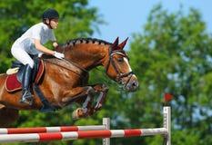 Ponticello equestre - amazzone e cavalla della baia Immagine Stock