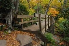 Ponticello pedonale in montagne di autunno immagini stock libere da diritti