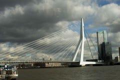Ponticello Rotterdam di ERASMUS Immagini Stock Libere da Diritti
