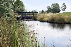 Ponticello sopra il rischio dell'acqua sul terreno da golf Fotografia Stock Libera da Diritti