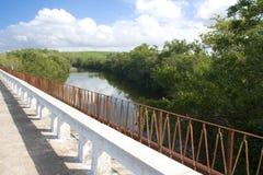Ponticello sopra un fiume in Cienfuegos (ii) Immagini Stock