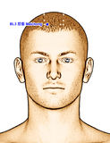 Ponto BL3 Meichong da acupuntura do desenho, ilustração 3D Imagens de Stock Royalty Free
