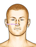 Ponto da acupuntura que tira GV25 Suliao Imagem de Stock Royalty Free