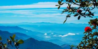 Ponto de opinião da paisagem muito névoa na montanha Imagem de Stock