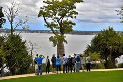 Ponto de turistas no rei Park Fotos de Stock Royalty Free