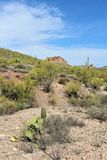 Ponto de vista da vista da agulha dos tecelões, junção de Apache, o Arizona, Estados Unidos imagem de stock royalty free