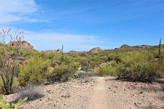 Ponto de vista da vista da agulha dos tecelões, junção de Apache, o Arizona, Estados Unidos foto de stock