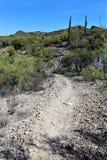 Ponto de vista da vista da agulha dos tecelões, junção de Apache, o Arizona, Estados Unidos fotografia de stock royalty free