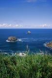 Ponto de vista de Oregon Imagens de Stock Royalty Free