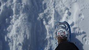 Ponto de vista do caminhante Os pés do close up com os sapatos de neve que andam na neve surgem Snowshoeing na neve fresca video estoque