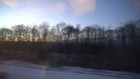 ponto de vista 4K da janela de um trem de passageiros A floresta abandonada do inverno move-se fora da janela video estoque