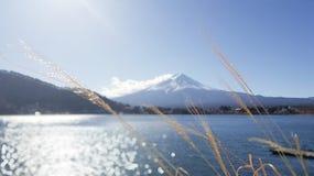 Ponto de vista de Monte Fuji em Kawaguchiko Imagem de Stock