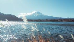 Ponto de vista de Monte Fuji em Kawaguchiko Fotografia de Stock Royalty Free