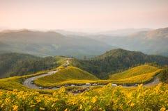 Ponto de vista na montanha na manhã Foto de Stock Royalty Free
