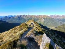 Ponto de vista panorâmico na trilha Nova Zelândia do kepler fotografia de stock royalty free