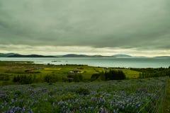Ponto de vista perto de Thingvellir, parque nacional Imagens de Stock
