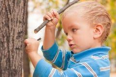 Ponto do rapaz pequeno Foto de Stock
