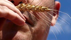 Ponto do trigo na boca do homem não barbeado filme
