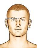 Ponto EX-HN3 Yintang da acupuntura do desenho, ilustração 3D Fotografia de Stock Royalty Free