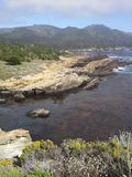 Ponto Lobos, Califórnia Imagem de Stock