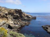 Ponto Lobos, Califórnia Imagens de Stock