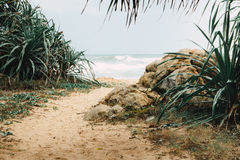 Ponto secreto da praia Fotos de Stock