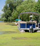 Pontoon Boat in Algea Stock Photo