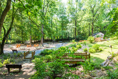 Ponts et bancs en parc vert Image stock