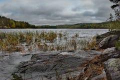 Ponura jesień na jeziornym Ladoga fotografia stock