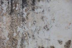 Ponuractwo ściana z foremką fotografia stock