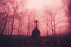 Ponury lasowy cmentarz Zdjęcia Stock