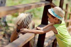 Pony and boy Stock Photo