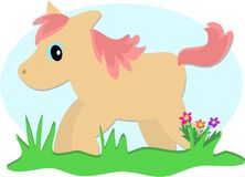 Pony Horse Romping in the Grass Royalty Free Stock Photos