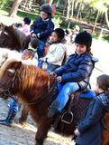 Pony, my best friend. Children having hobby of pony riding.  At the pony riding center, during an outside pony riding class.  Playing, having fun, learning Royalty Free Stock Images