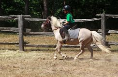 Pony Ride. A young girl riding on her pony Stock Photos