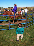 Pony ride and children Royalty Free Stock Photo