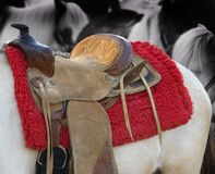 Pony Ride Saddle Royalty Free Stock Image