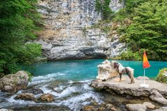 A pony stands in a gorge of an against a small blue lake Stock Image
