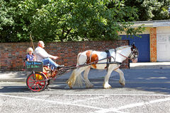 Pony and trap. Photo of a family travelling by pony and trap along faversham high street in kent Royalty Free Stock Images