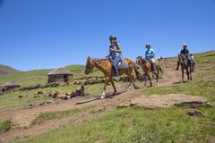 Pony trekking in Lesotho near Semonkong. Royalty Free Stock Image